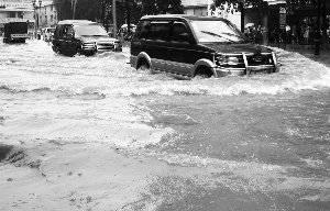 东莞5100台汽车遭浸 保险赔付预估过亿